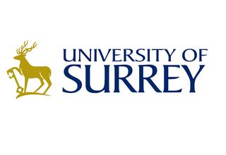 Job Vacancy at the University of Surrey: Teaching Fellow in Lighting